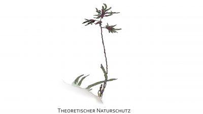 Theoretischer Naturschutz